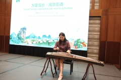koncert-Guzheng-Zhao-Zhirong